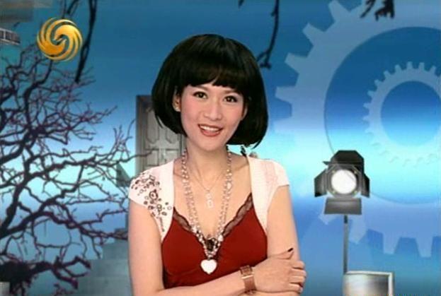 凤凰卫视主播沈星遭男友捉奸 陈红前夫李军翻