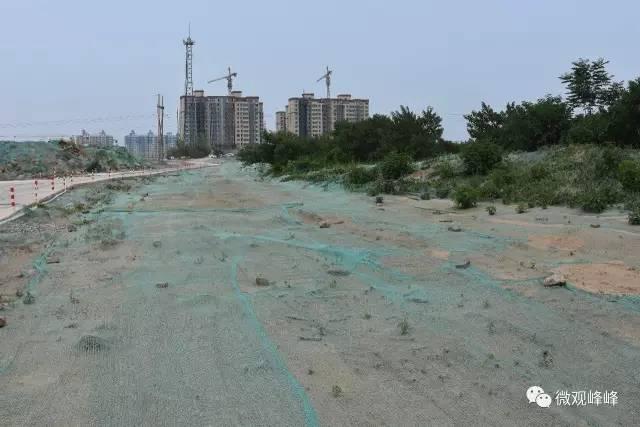 对工地道路两侧进行绿化,临时裸露在外的土地用抑尘网全面苫盖。