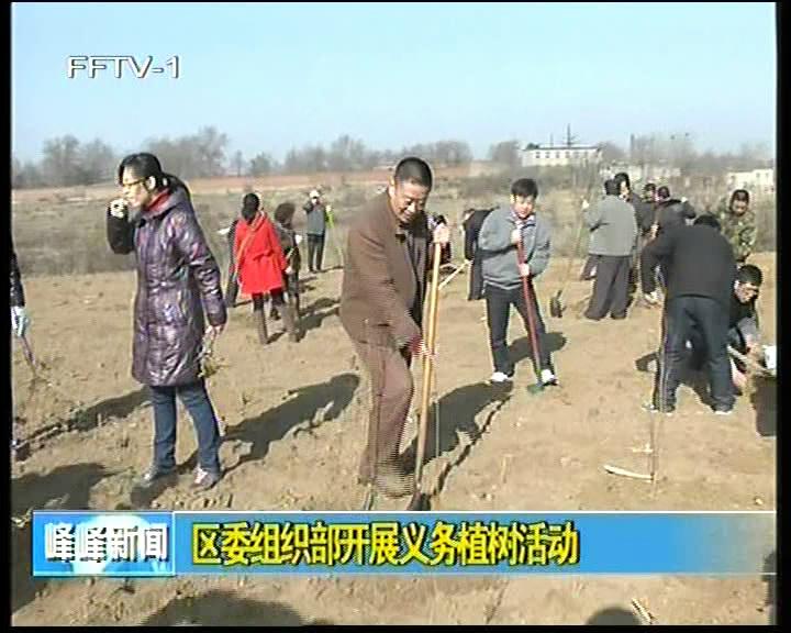 区委组织部开展义务植树活动