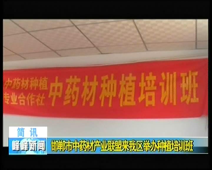 邯郸市中药材产业联盟来我区举办种植培训班
