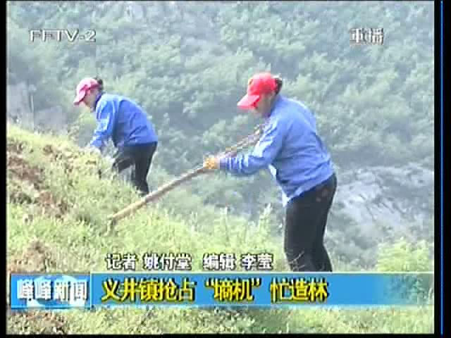 """义井镇抢占""""墒机""""忙造林"""