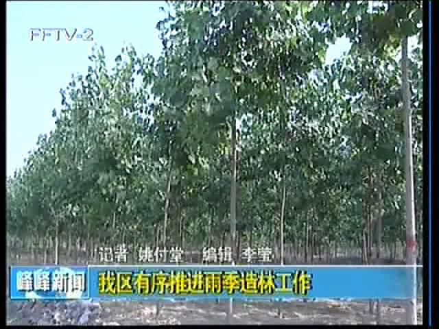 峰峰全区有序推进雨季造林工作